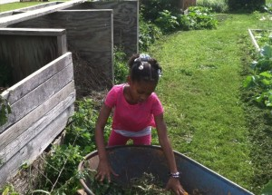 Everybody has a job. Our smallest gardener transfers pulled weed to the compost bin.